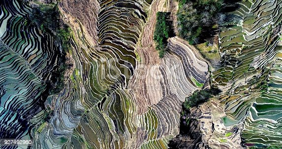 Aerial view on rice fields filled with water during spring. World's largest and most beautiful Rice Terraces, the Yuanyang Hani Rice Terraces in southeastern Yunnan province, China.