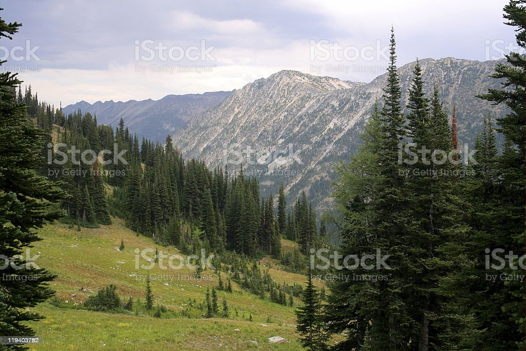 Mountainside Meadow royalty-free stock photo