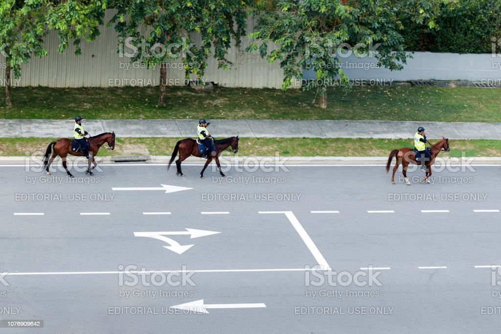 Mounted police on highway. Road marking indicating direction of movement. stock photo