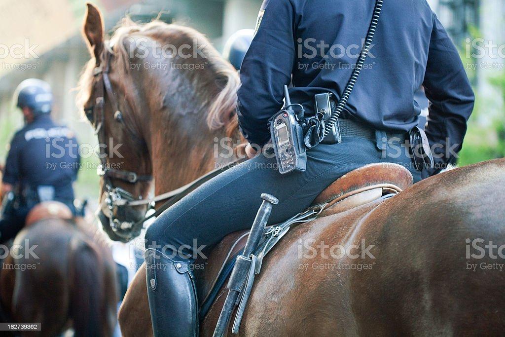 mounted police stock photo