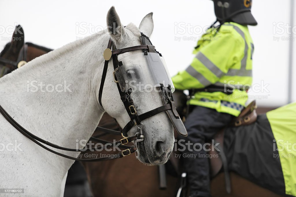 Mounted Police-More below. royalty-free stock photo