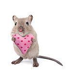 Mouse holding a heart shaped cushion