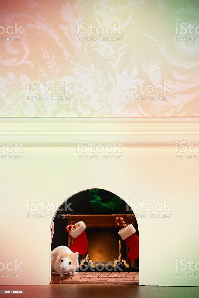 Mouse Hole at Christmas stock photo