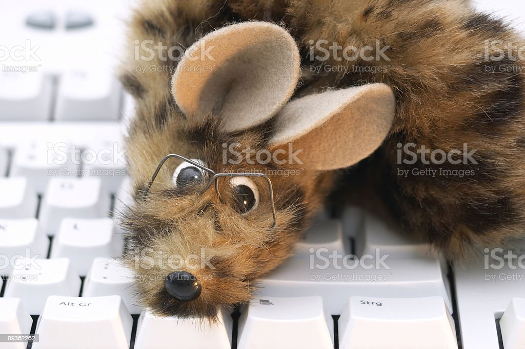 Mouse on board! royalty-free stock photo