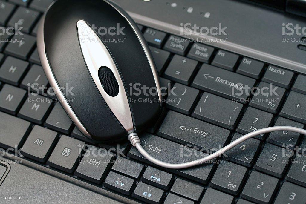 Maus auf der Tastatur – Foto
