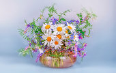 A bouquet of wild wild chamomile and mouse peas in a glass vase on a black table and a light blue background.