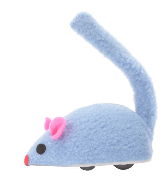 Mouse toy for cat pet with wheels picture id1130191067?b=1&k=6&m=1130191067&s=612x612&w=0&h=lm6 yrdmdpnmxe1k8s7cpnpodpvezgwcrfz9m5wbxso=