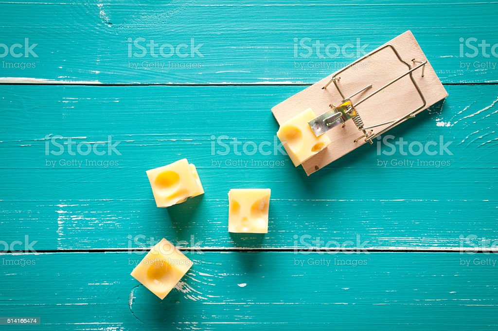 Mouse trap and cheese on turquoise table stock photo