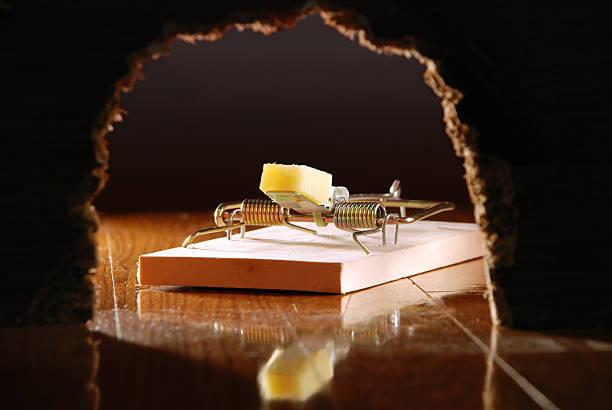 Mouse Trap and Cheese Seen Through Wall Hole stok fotoğrafı