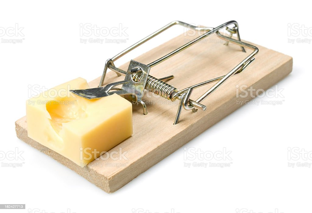 A mouse trap that has been set with some cheese  stock photo