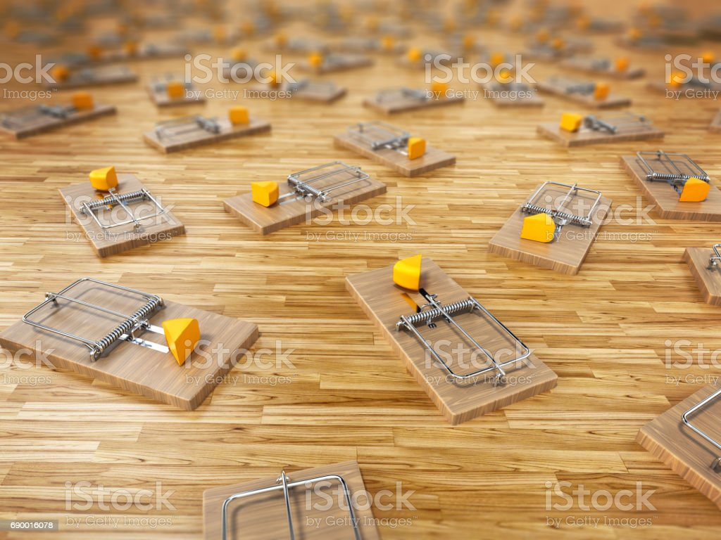 Mouse traps with a slice of cheese scattered on the floor stock photo