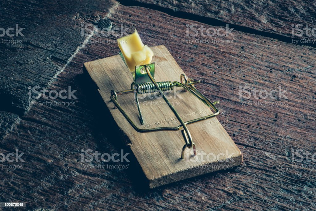 Mouse trpa on the floor stock photo