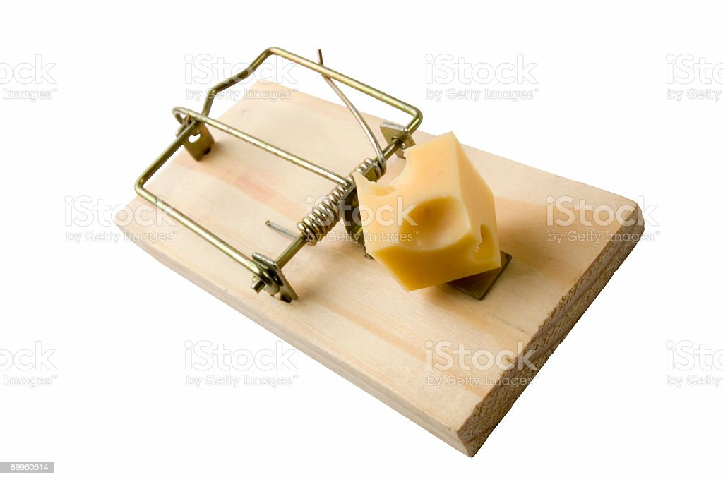 mousetrap with cheese royalty-free stock photo