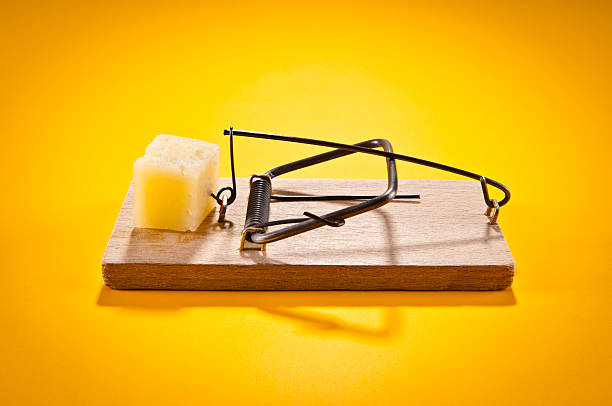 Mousetrap with hard cheese isolated on yellow, side view Mousetrap with hard cheese isolated on yellow, side view. trap stock pictures, royalty-free photos & images