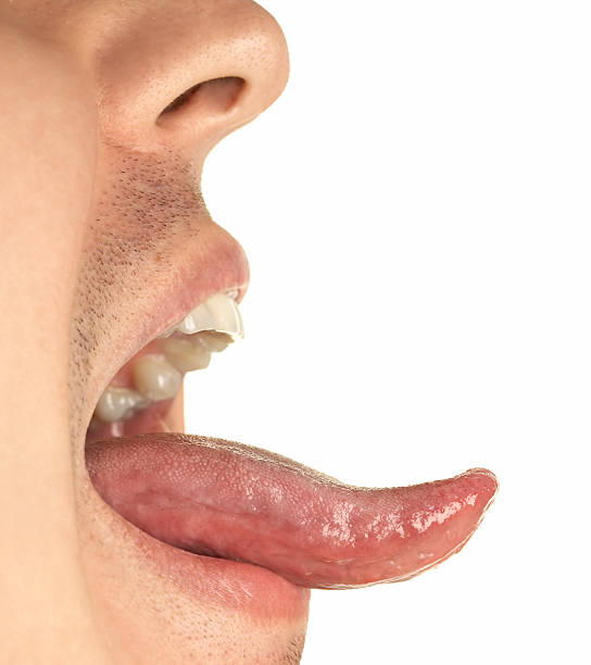 mouth and tongue - sticking out tongue stock photos and pictures