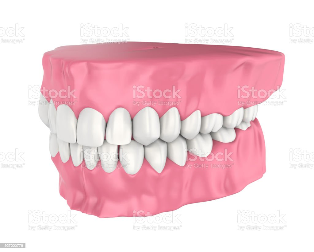 Mouth Gum And Teeth Isolated Stock Photo More Pictures Of Anatomy