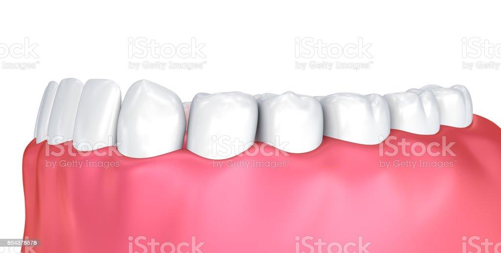 Ausgezeichnet Mund Und Zähne Anatomie Bilder - Menschliche Anatomie ...
