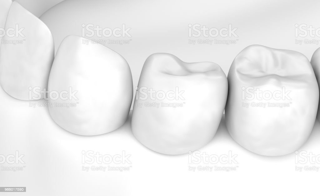 Mond tandvlees en tanden. Witte stye 3D illustratie - Royalty-free Anatomie Stockfoto