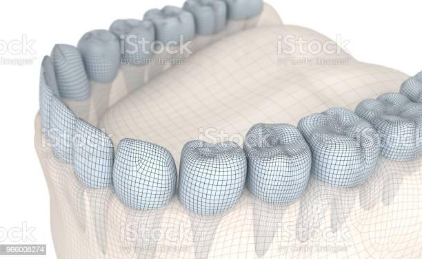 Mouth Gum And Teeth Wire 3d Model Illustration - Fotografias de stock e mais imagens de Anatomia