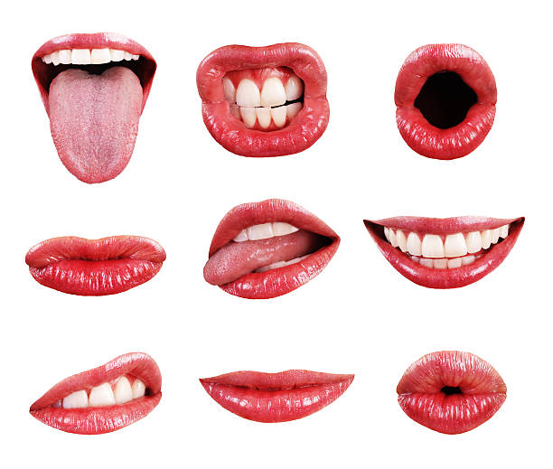 mouth, teeth, lips, and tongue page elements isolated collection assortment - human lips stock photos and pictures