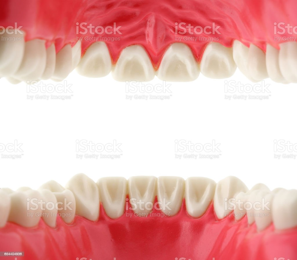 mouth with teeth from inside stock photo