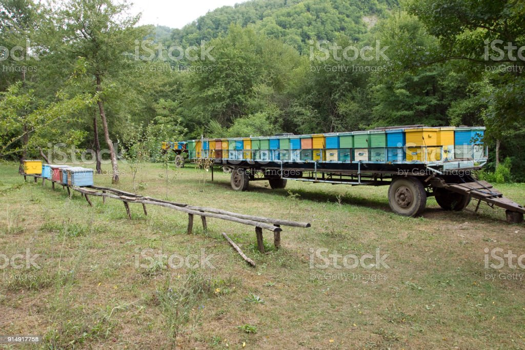 Movable apiary, mounted in a truck trailer - foto stock