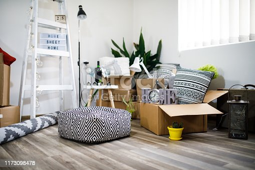 istock Move. Cardboard boxes and cleaning things for moving into a new home 1173098478