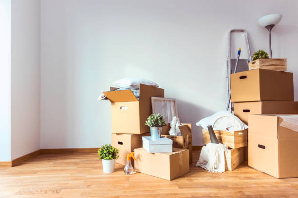 move. cardboard boxes and cleaning things for moving into a new home - house hunting stock photos and pictures