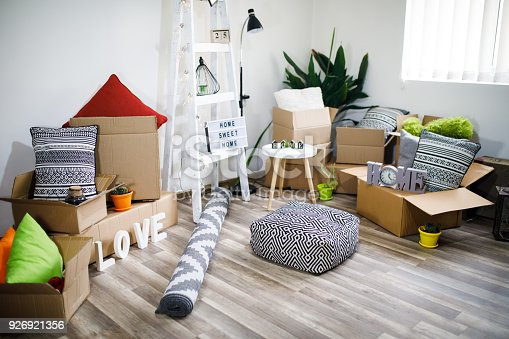 istock Move. Cardboard boxes and cleaning things for moving into a new home 926921356
