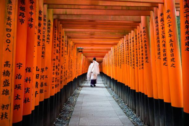 movimiento de monje en la puerta mil torii, en brillo de fushimi inari, kyoto, japón - kyoto fotografías e imágenes de stock