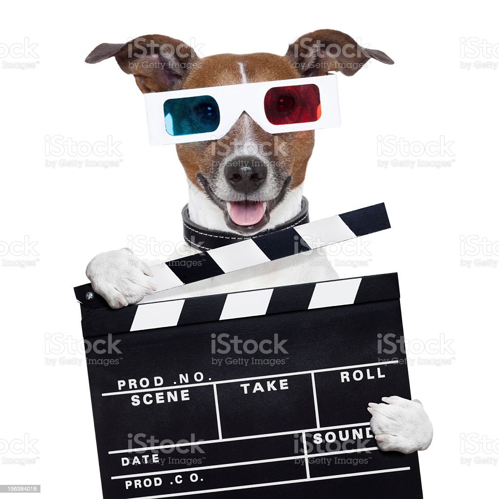 movie clapper board 3d glasses dog royalty-free stock photo
