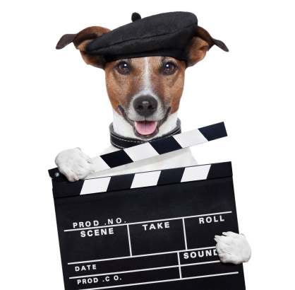 istock movie clapper board director dog 155652834