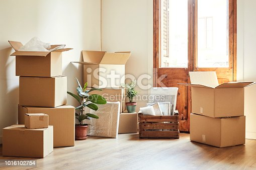 Cardboard boxes and potted plants in empty room. Moving objects are on hardwood floor of new apartment.