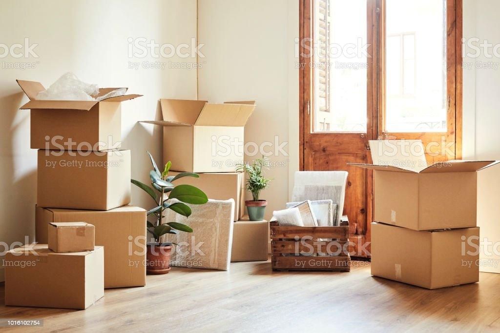 Verschieben von Kisten und Topfpflanzen in neue Wohnung – Foto