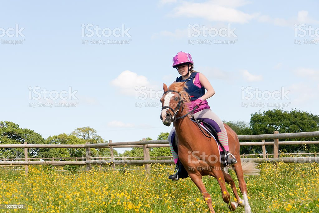 Moving fast-girl and her pony cantering amongst flowers. royalty-free stock photo