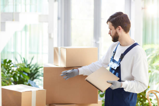 Moving manager examining packages stock photo