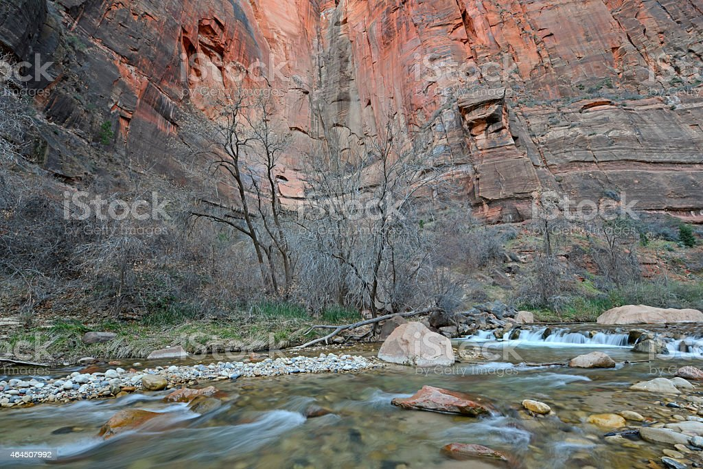 Moving River and red rock walls in Zion National Park stock photo