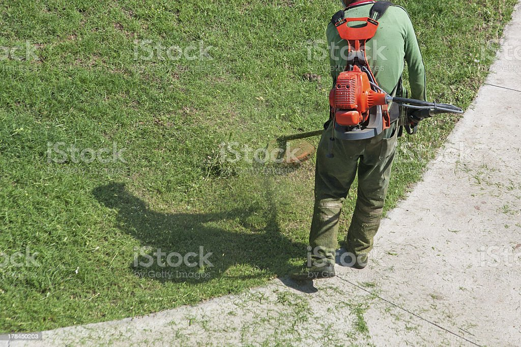 Mow grass stock photo