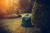 Mowed grass in a sack. The concept of taking care of the garden and garden care.