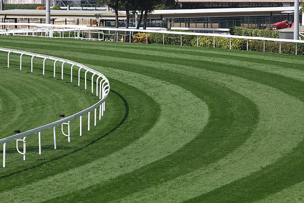 mowed lawn used as a horse racing track restricted by fence - racehorse track bildbanksfoton och bilder