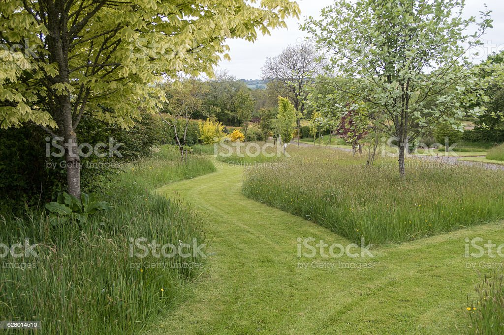 Mowed paths through a garden with grass and trees stock photo