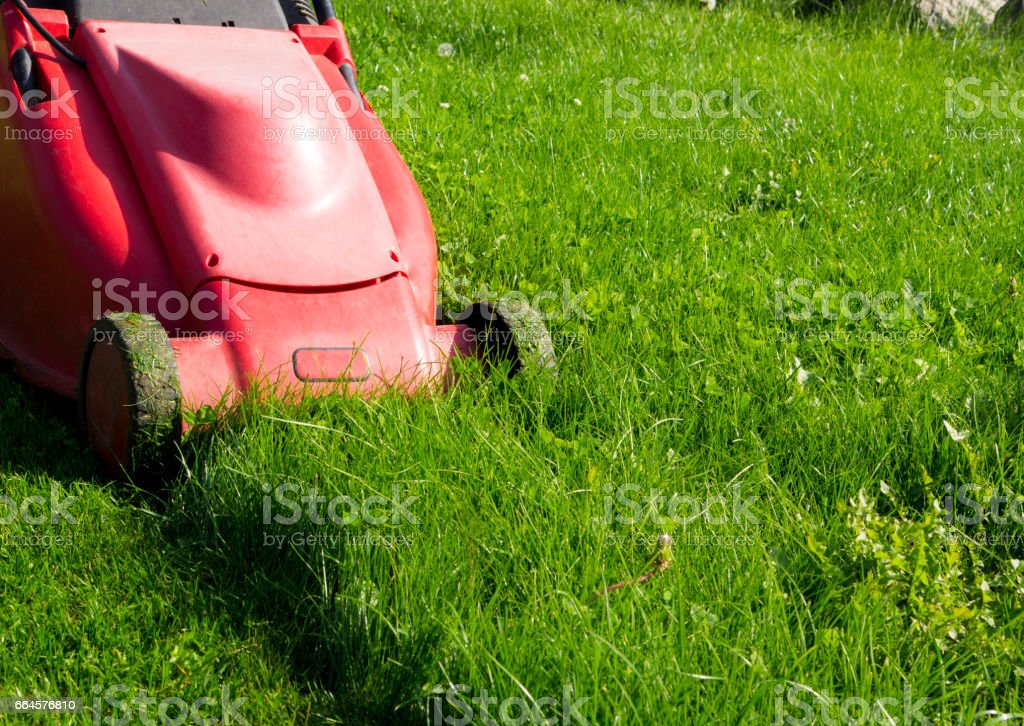 Mower royalty-free stock photo
