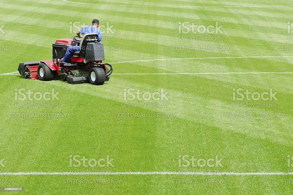 Mowing grass in a football stadium stock photo