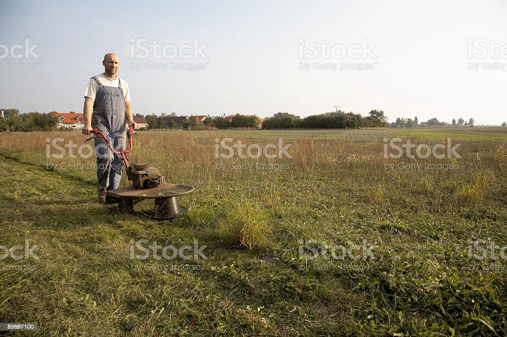 Mowing Grass royalty-free stock photo