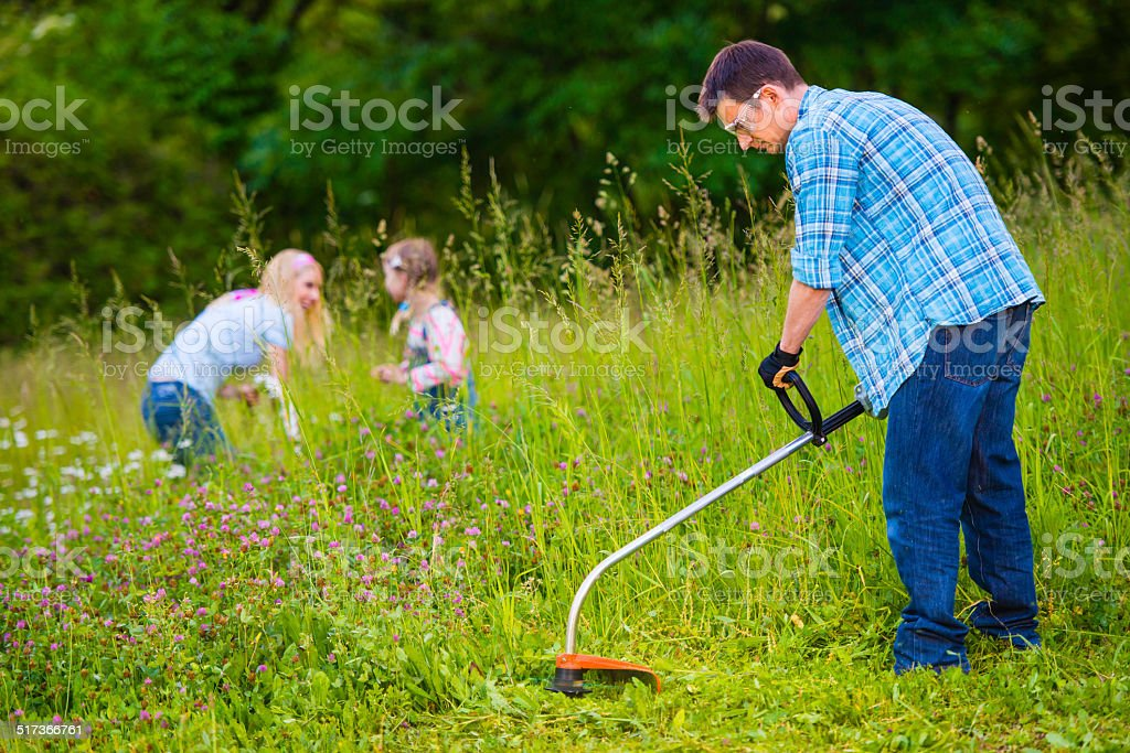Mowing Lawn With A Weed Trimmer stock photo