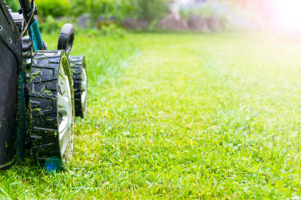 mowing lawns, lawn mower on green grass, mower grass equipment, mowing gardener care work tool, close up view, sunny day. soft lighting - lawn stock pictures, royalty-free photos & images