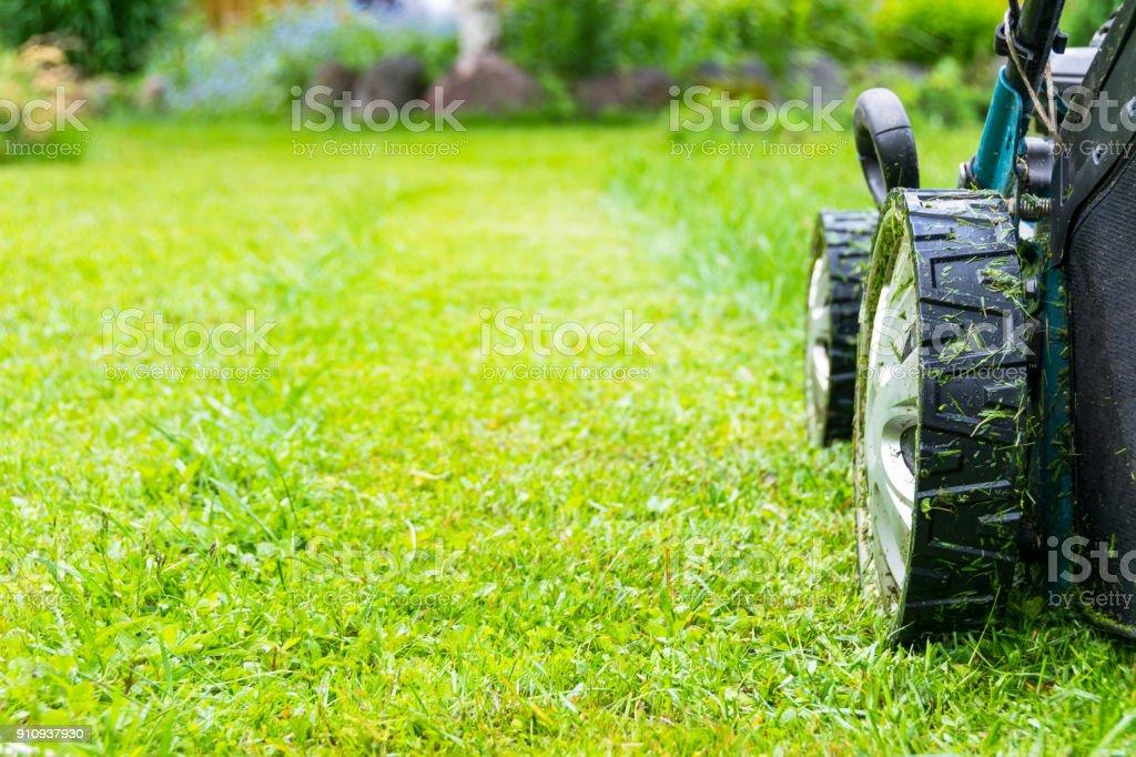 Rasenmähen, Rasenmäher auf dem grünen Rasen, Mäher Rasen Ausrüstung, Mähen Gärtner Pflege Arbeitsgerät, Nahaufnahme, sonnigen Tag – Foto