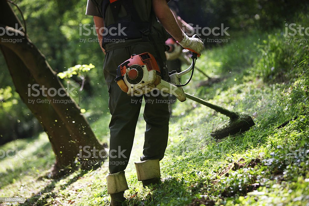 Mowing stock photo