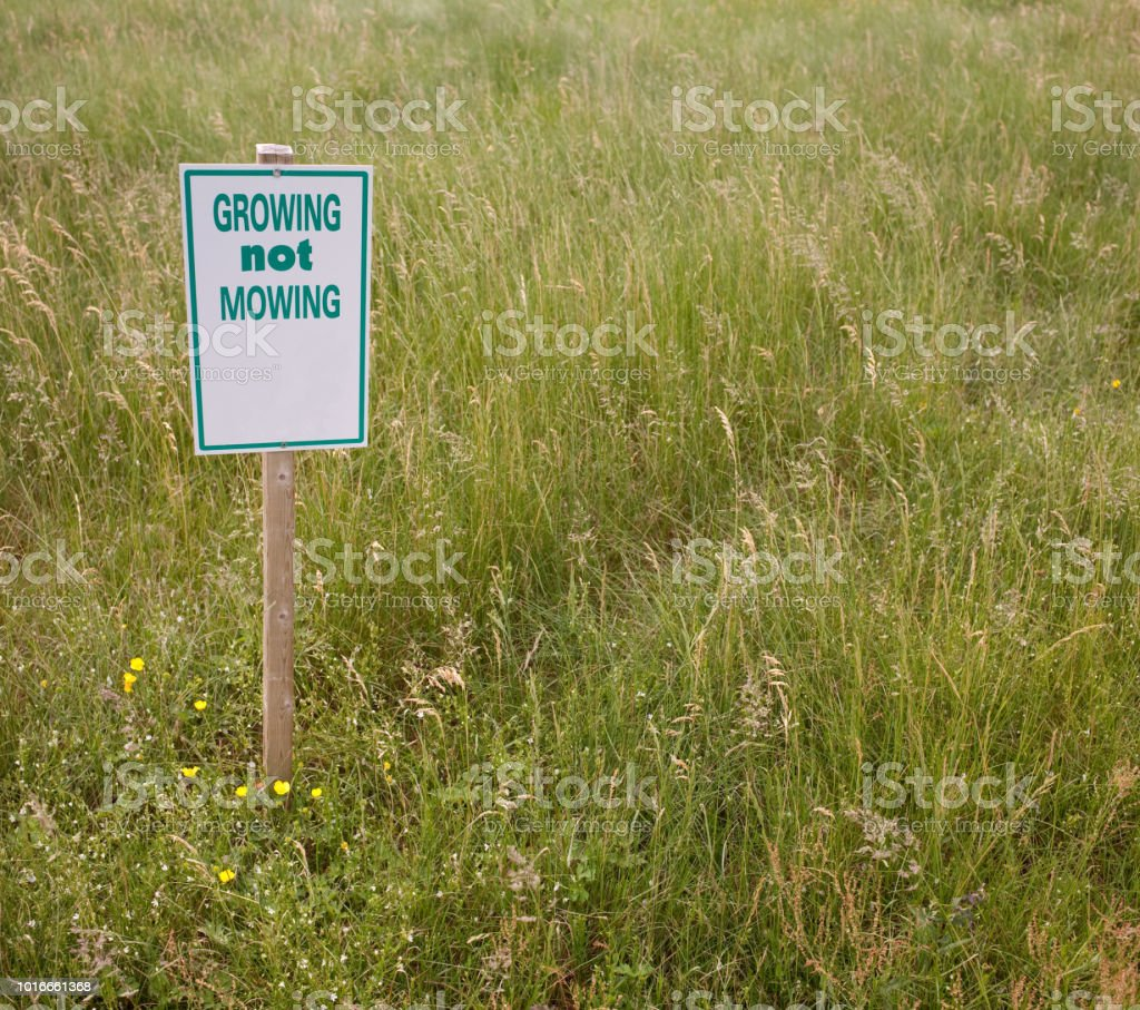 Mowing Sign stock photo