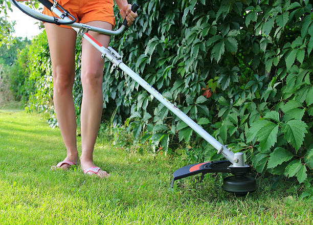 Mowing the Grass Young woman Mowing the Grass hedge clippers stock pictures, royalty-free photos & images